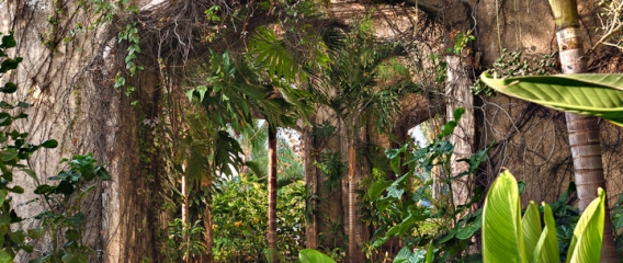 Emerald Bay Ruins